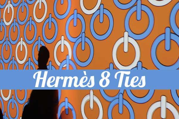 hermes  ties mostra