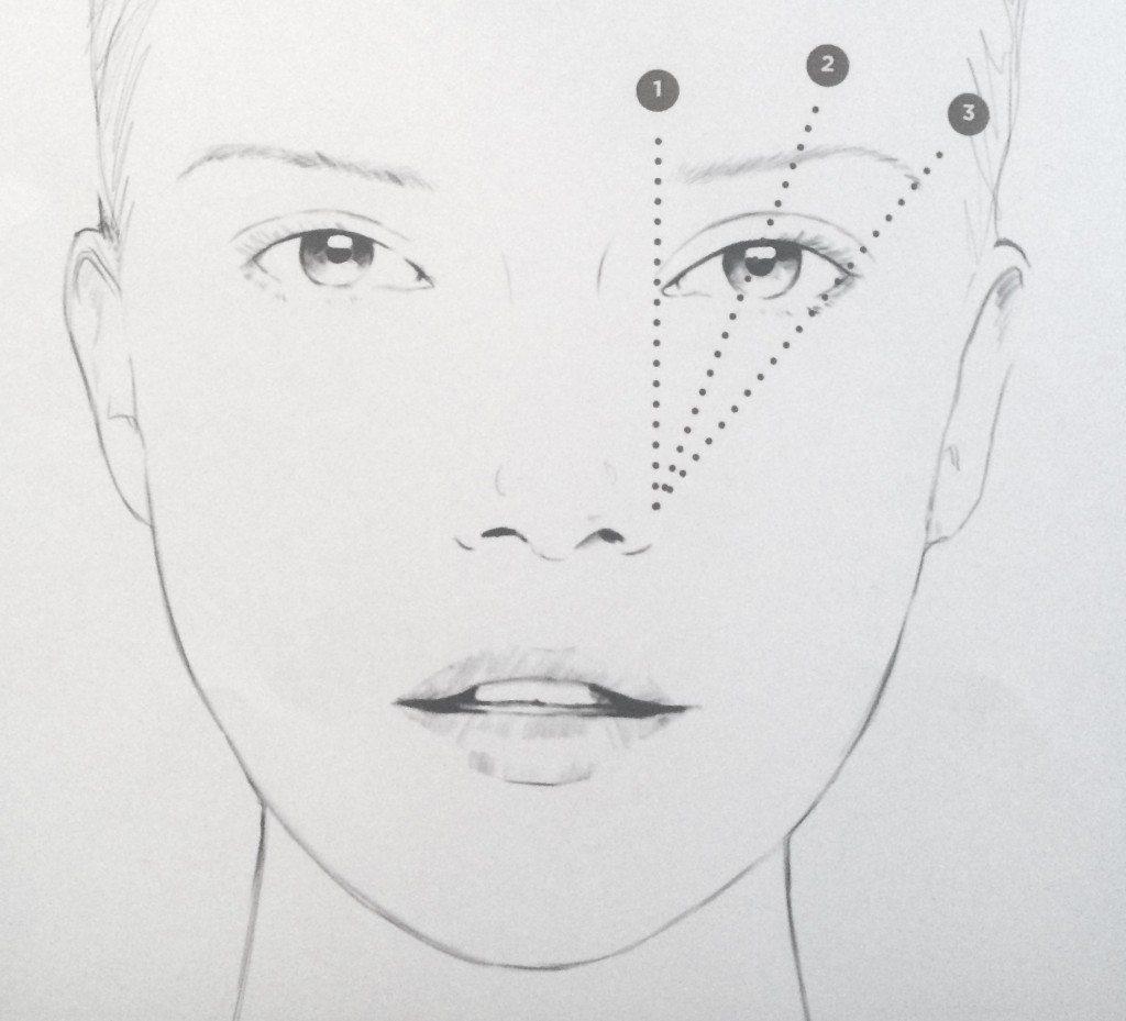 Face chart sopracciglia
