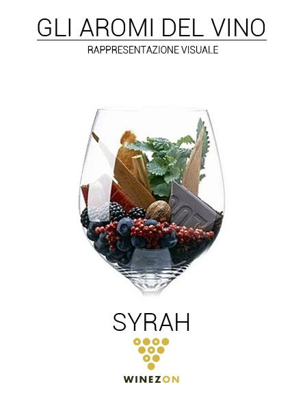 Syrah - winezon