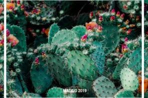 Primavera per fiorire – Maggio 2019